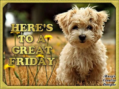 Heres To A Fabulous by Heres To A Great Friday Pictures Photos And Images For