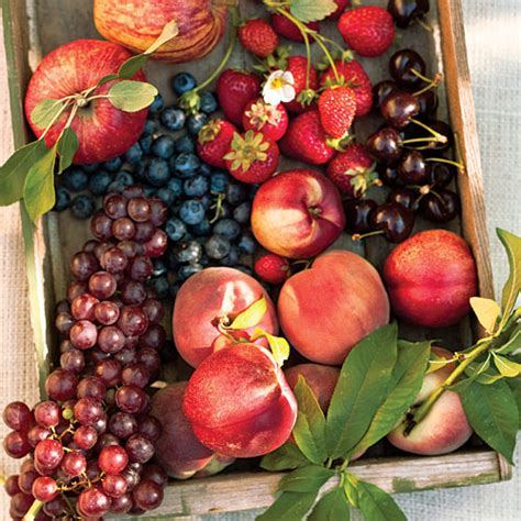 when is a time to plant fruit trees the best fruits to plant in cold weather sunset