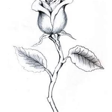 rose bud tattoo designs eszteiz with stem drawing rosebud with stem this draws me