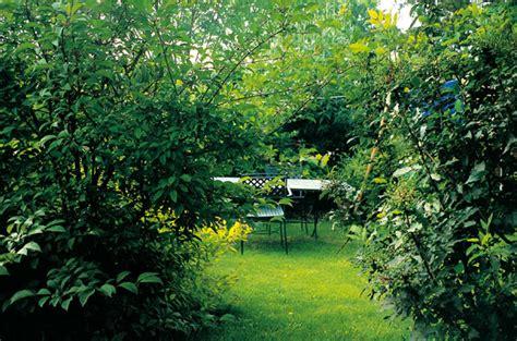 piccoli giardini giardini