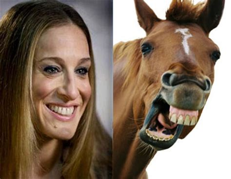 Sarah Jessica Parker Horse Meme - 13 tragic deaths in the height of passion the danger of