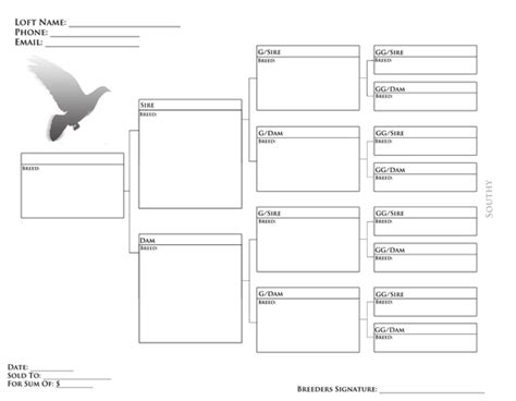 blank pigeon pedigree forms related keywords suggestions