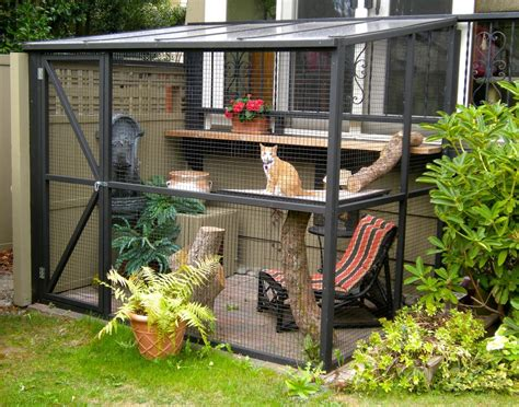 the new thing catios these backyard spaces are the cat