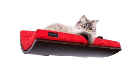 modern cat cats shelf modern cat furniture cat perch soft and by