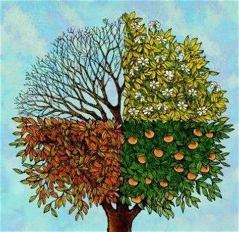 Tree Season Card Holder Hitam 56 best images about four season tree on