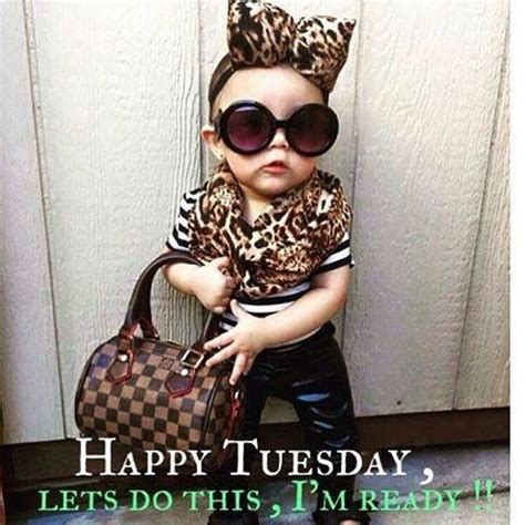 images  tuesday humor  pinterest tuesday