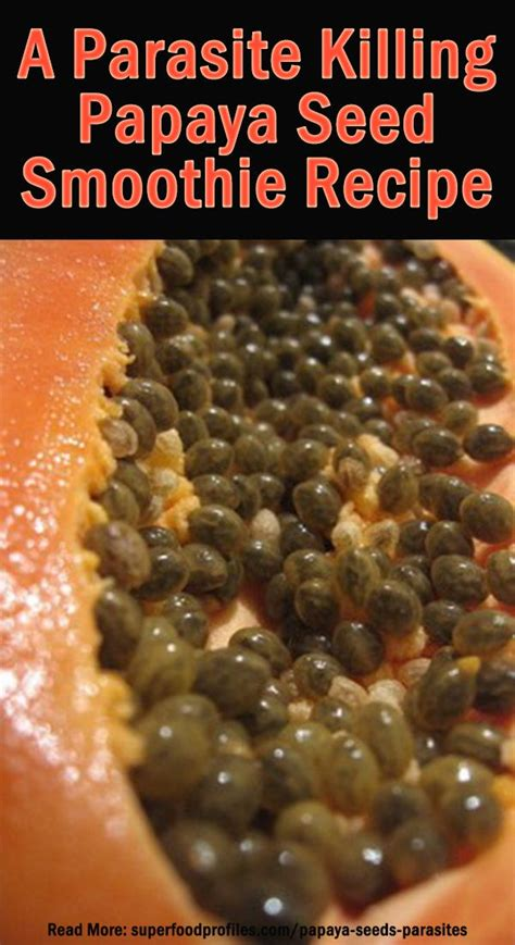 Black Seed Detox Symptoms by How To Kill Parasites With Papaya Seeds An Intestinal