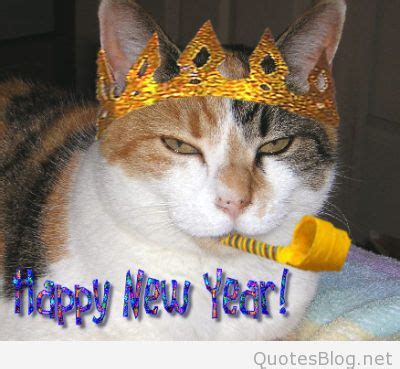 new year animal places happy new year animal images pictures photos to wish