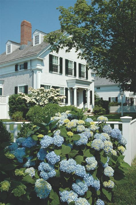 Vineyard Gardens by The Stunning Gardens And Landscapes Of Martha S Vineyard Hgtv