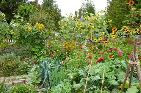 best 20 permaculture garden layout design urban design