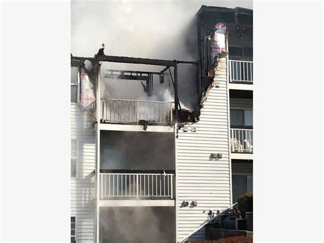 section 8 middletown ct 4 injured dog dies in fire at middletown apartment