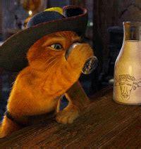 drinking gifs    gif  gifer