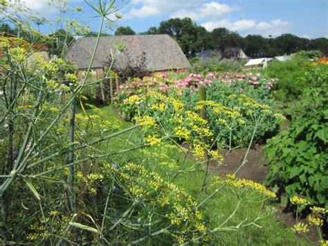 high tea bloemen plukken pluktuin pluktuin stoutenburg