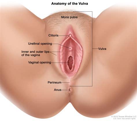 painful lump above c section incision vulvar cancer treatment pdq 174