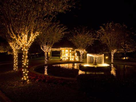 outside tree lighting ideas 25 outdoor tree lighting ideas on