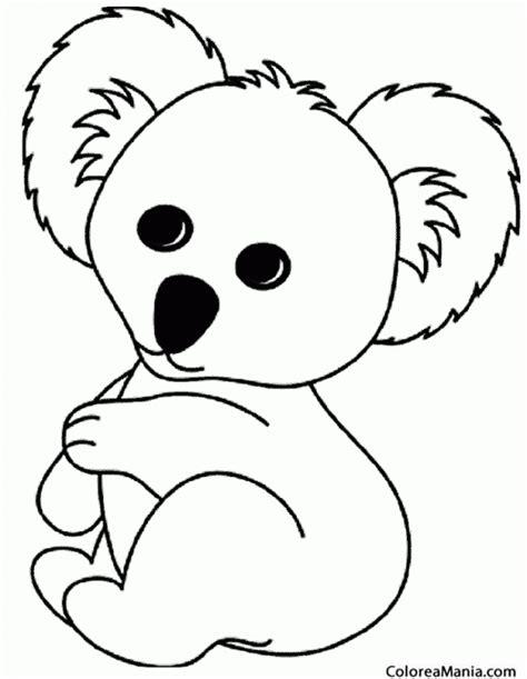 dibujos para colorear koala colorear koala de peluche animales del bosque dibujo