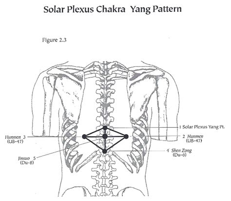 solar plexus location celiac plexus diagram imageresizertool com