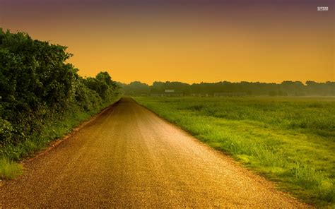 hedge road field golden sunset wallpapers hedge road