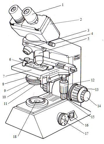 mikroskop khayasar
