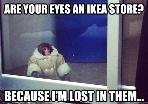 Cold Shoulder Meme - are your eyes an ikea store because i m lost in them