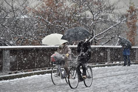 november tokyo tokyo has november snow for first time in 54 years