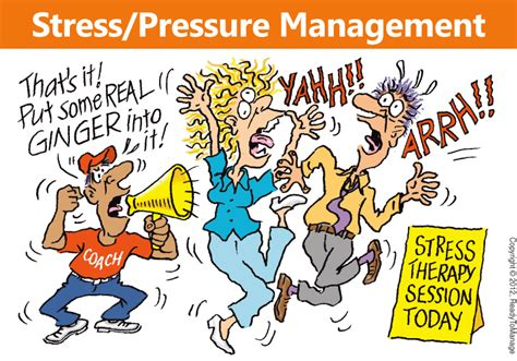 stress the psychology of managing pressure books stress pressure management readytomanage