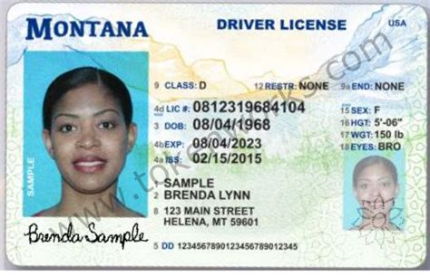 Identification Card Ellie Island Template by Ri Department Of Motor Vehicles Driver S License