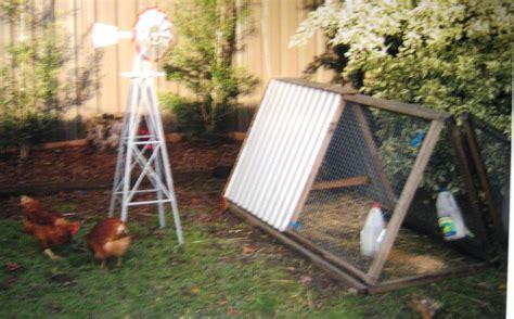 backyard chickens sydney rentachook sydney