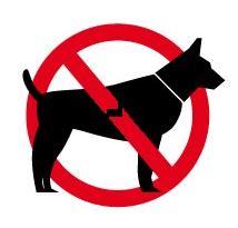divieto d ingresso ai cani accesso dei cani nei locali pubblici vediamo la legge 2
