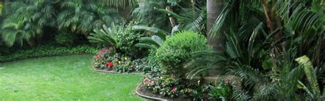 backyard landscaping san diego backyard landscaping ideas san diego image mag