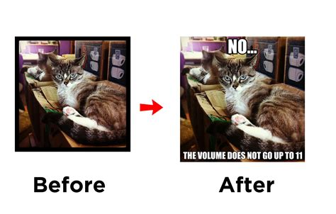 Meme Editing - five fun photo editing apps htc blog