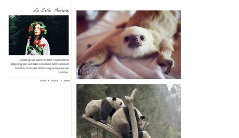 tumblr themes free fixed sidebar page not found error 404 helping web designers get