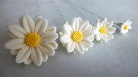 fiori pasta di zucchero passo passo margherite in pasta di zucchero sugar paste by