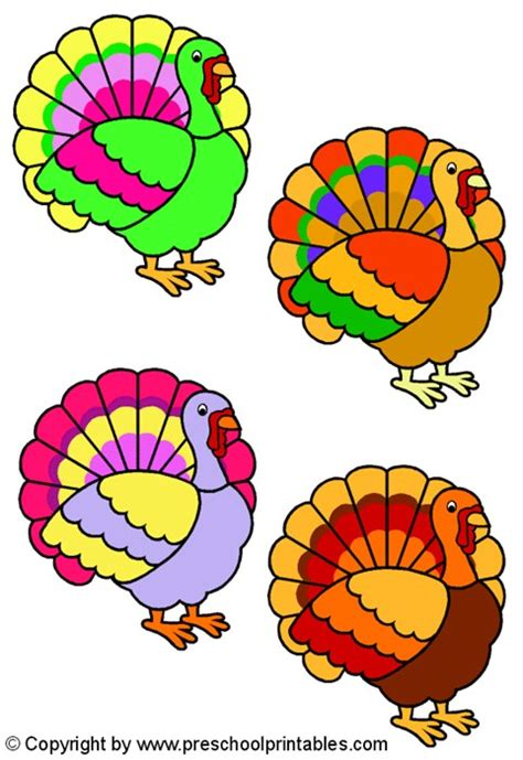 colored turkey 187 colored turkey pictures