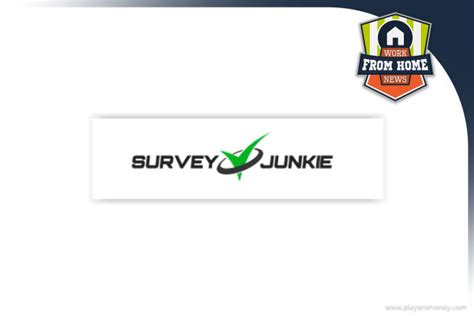 Paid To Answer Surveys - survey junkie review earn more income get paid to answer questions