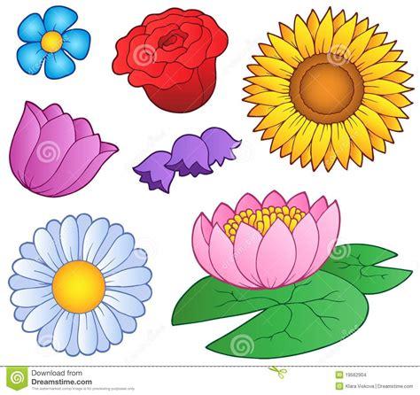 imagenes de varias flores varias flores fijadas imagenes de archivo imagen 19562904