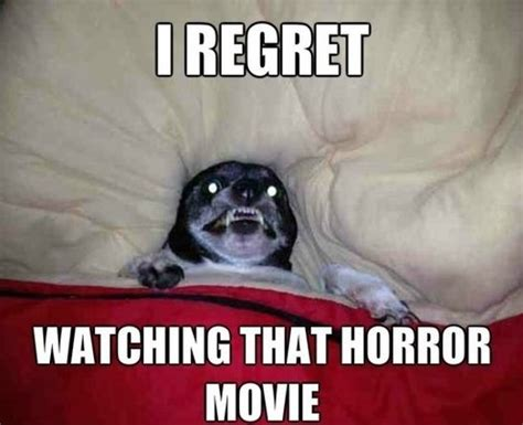 Horror Memes - i regret watching that horror movie memes comix funny pix