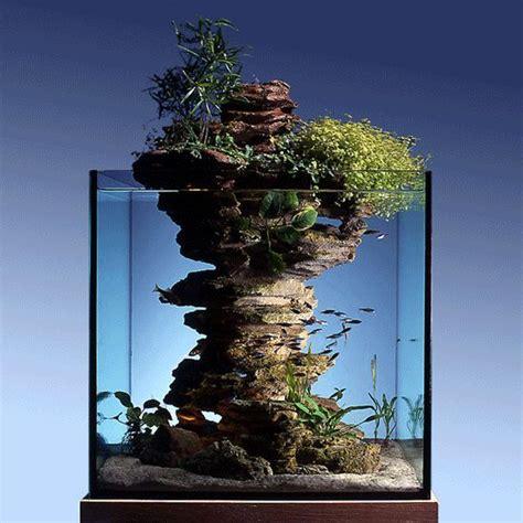 ufficio reclami wind acquario bianco piccolo acquario pesci pesce per