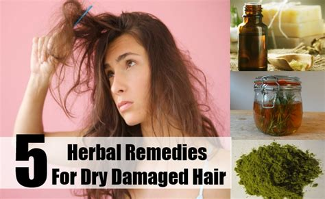 five herbal remedies for damaged hair damaged