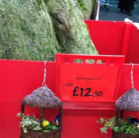 half price real christmas trees at park royal asda london