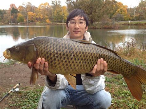 the of angling wherein are discovered many secrets necessary to be knowne by all that delight in that recreation classic reprint books carp fishing basics valley fishing