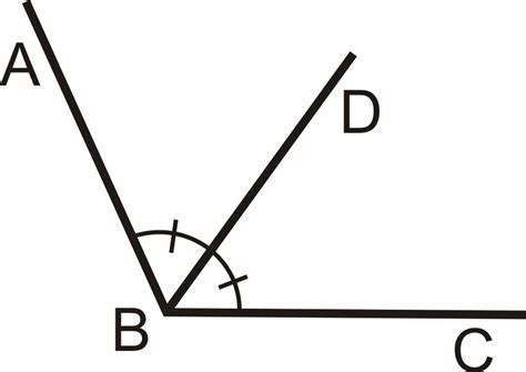 You Can Bisect An Angle Using The Paper Folding Technique - congruent angles and angle bisectors read geometry