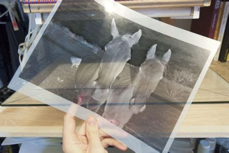 How To Make Prints On Paper - an inkjet transparency