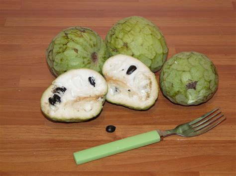 fruit l anone file anone jpg wikimedia commons