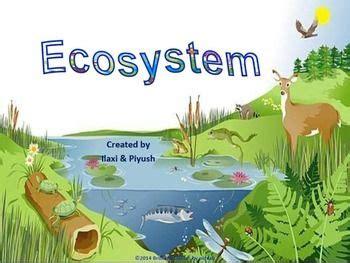 Landscape Biodiversity Definition 15 Best Ideas About Aquatic Ecosystem On