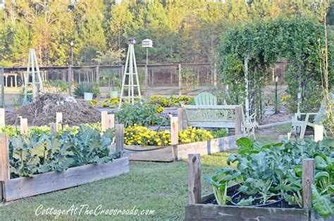 Cottage Vegetable Garden Our Fall Vegetable Garden Cottage At The Crossroads