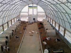 Calving Barn Calf Shed Building Plans Pictures To Pin On Pinterest