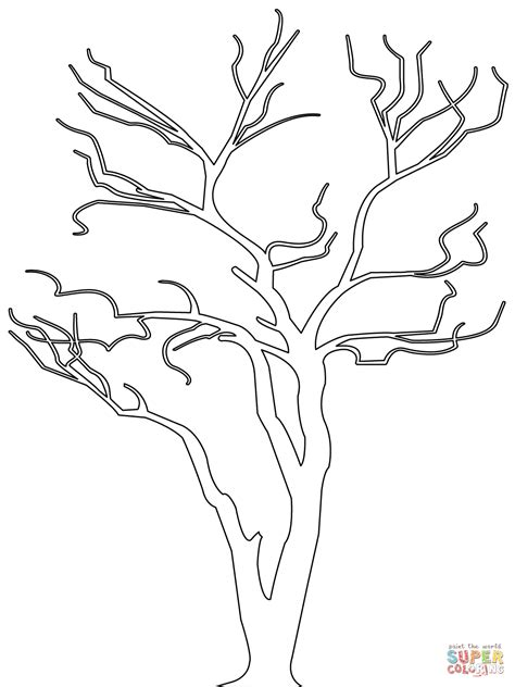 Bare Tree Outline Coloring Page Free Printable Coloring Tree Coloring Page Outline