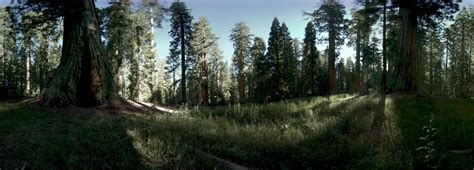 experience yosemite national park in reality with