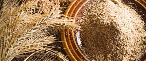 alimenti contenenti frumento perch 232 i cereali contenenti glutine sono cos 236 importanti